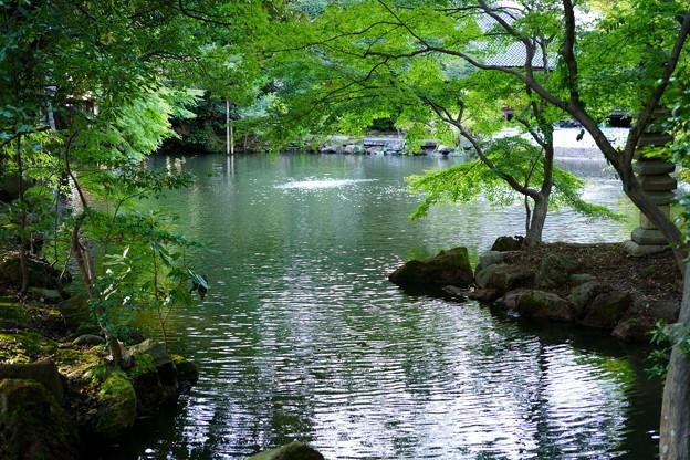 松風閣庭園(2)