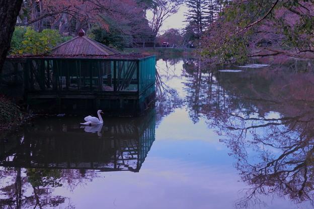 奥卯辰山健民公園