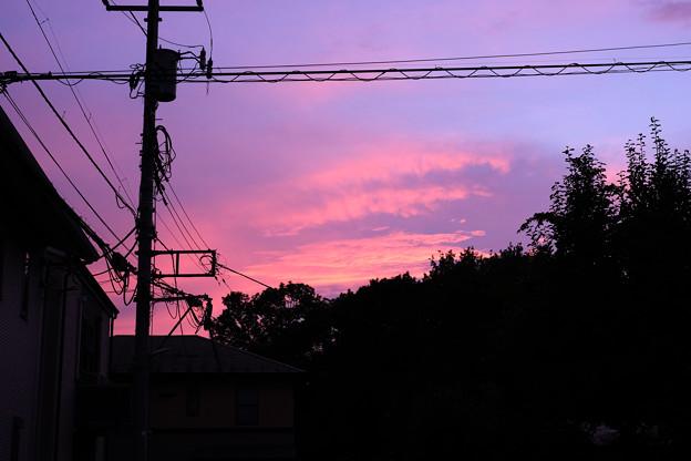 Photos: 夕焼け 20210726