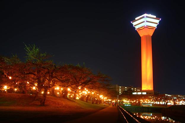 世界赤十字啓発デーレッドタワー