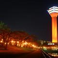 Photos: 世界赤十字啓発デーレッドタワー