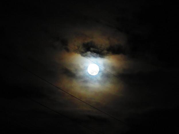 Photos: 月の輪