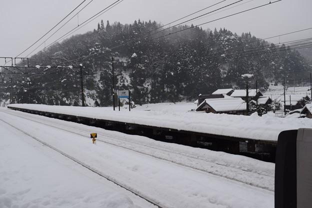 近江塩津駅の写真0068