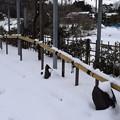 和倉温泉駅の写真0016