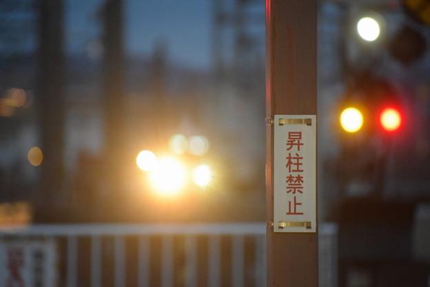 Photos: 金沢駅の写真0026