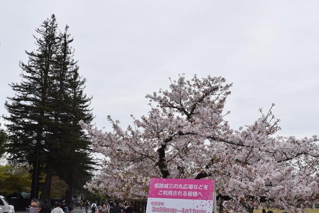 姫路城の写真0406
