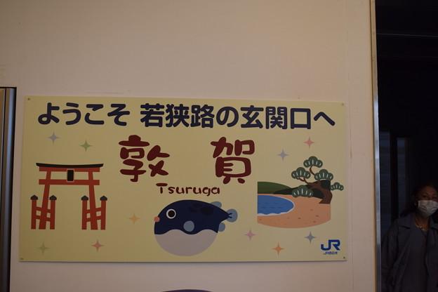 敦賀駅の写真0072