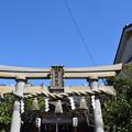 Photos: 敦賀市内の写真0394