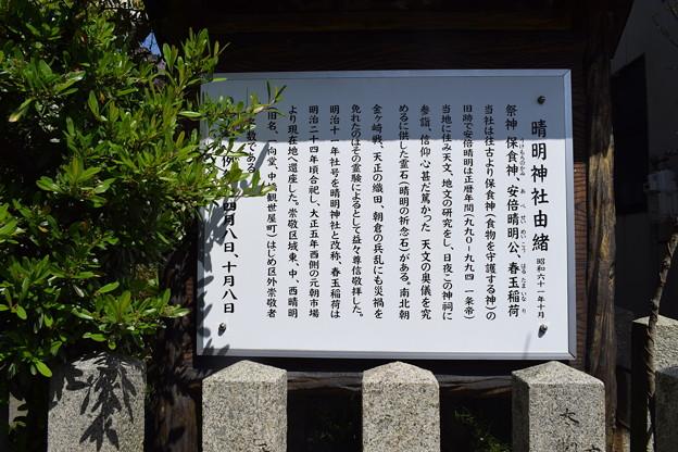 Photos: 敦賀市内の写真0397