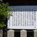 敦賀市内の写真0397