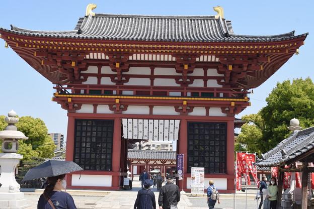 四天王寺の写真0011
