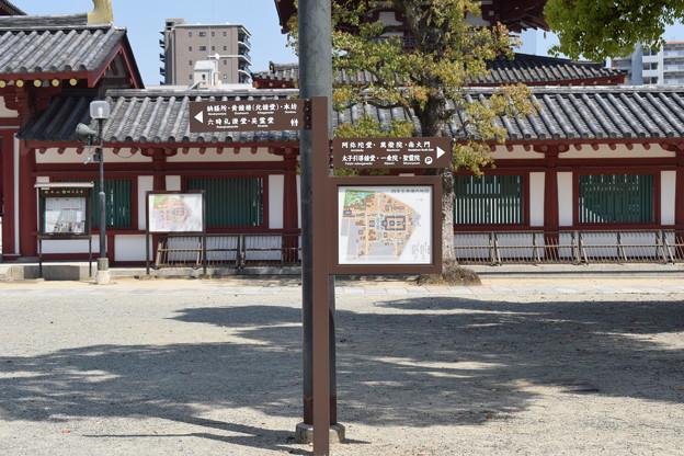 四天王寺の写真0016