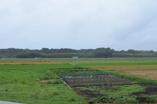 日野駅の写真0008