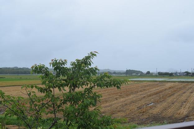 日野駅の写真0009