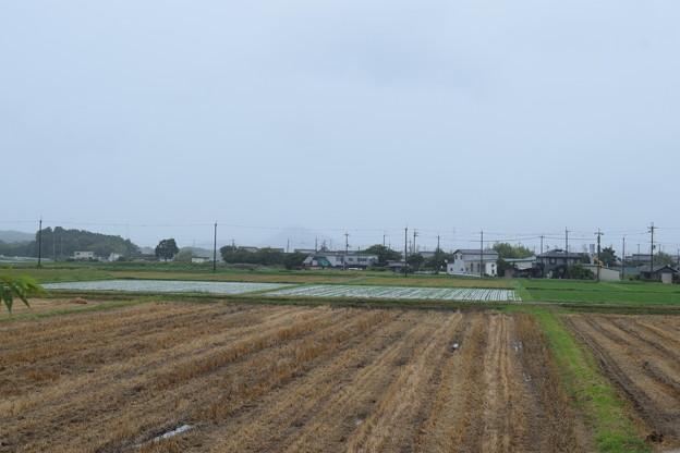 日野駅の写真0010