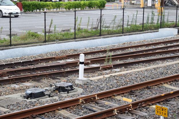長浜駅の写真0016