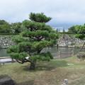姫路城の写真0410