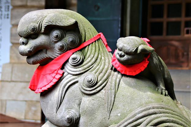おんぶ狛犬