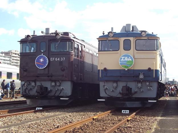 EF64 37 EF65 1102