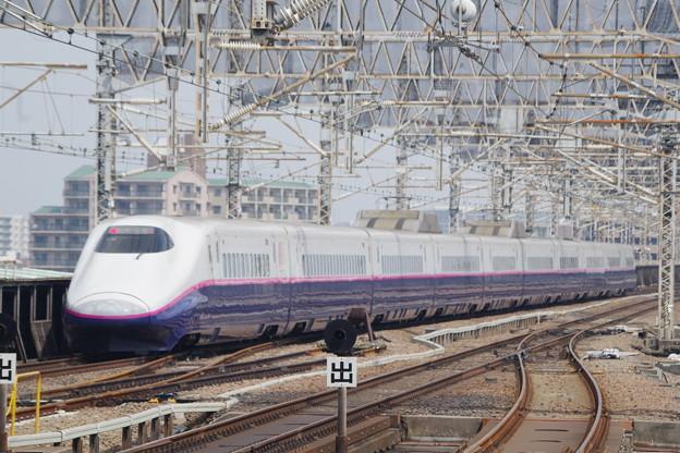 E2系J14編成 (1)