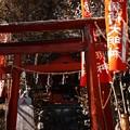 Photos: 稲荷-2132