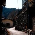 奥多摩の檜村(ひむら)_脇道-2129