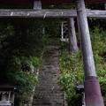 Photos: 奥多摩_むかし道_羽黒三田神社-2239