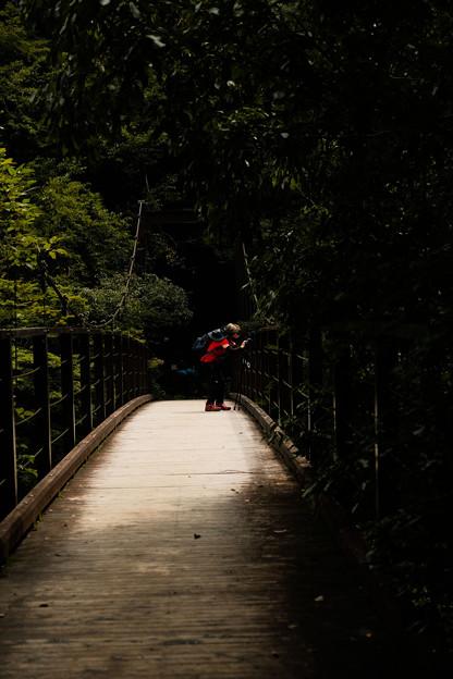 42鳩ノ巣渓谷_吊り橋-2398