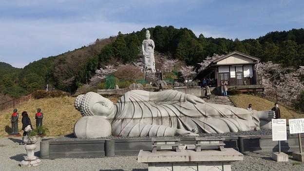 壷阪寺0327 (4)