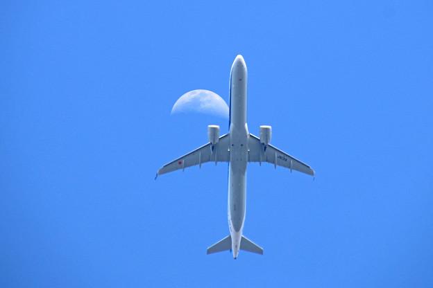 JA131A 全日空  Airbus A321-272N