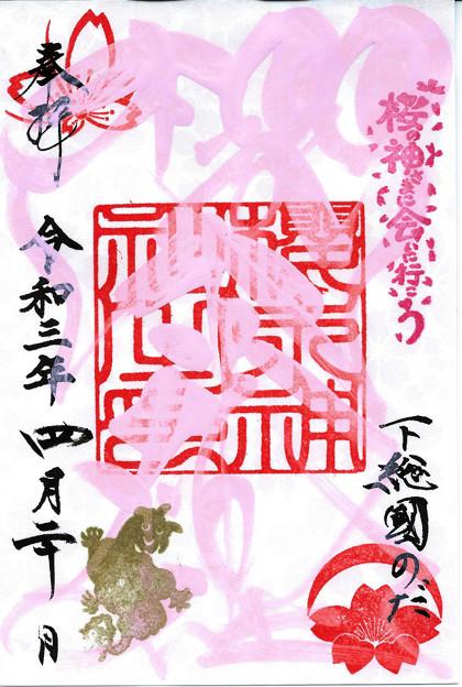 桜木神社(桜詣2)千葉県野田市