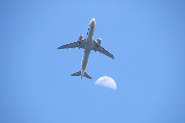 JA213A 全日空 Airbus A320-271N