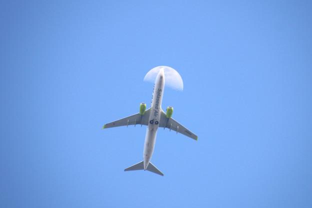 Photos: JA806X ソラシドエアー Boeing 737-86N