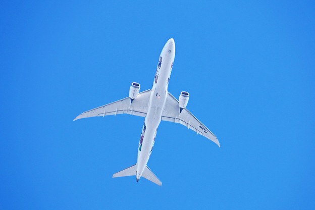 Photos: JA873J 日本航空 Boeing 787-9 嵐ジェット ハワイ