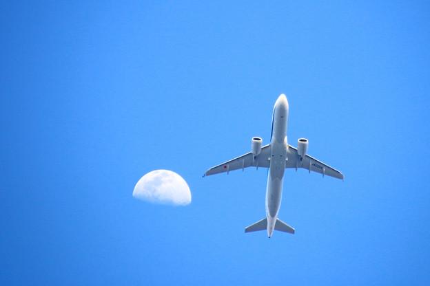 JA220A 全日空 Airbus A320-271N