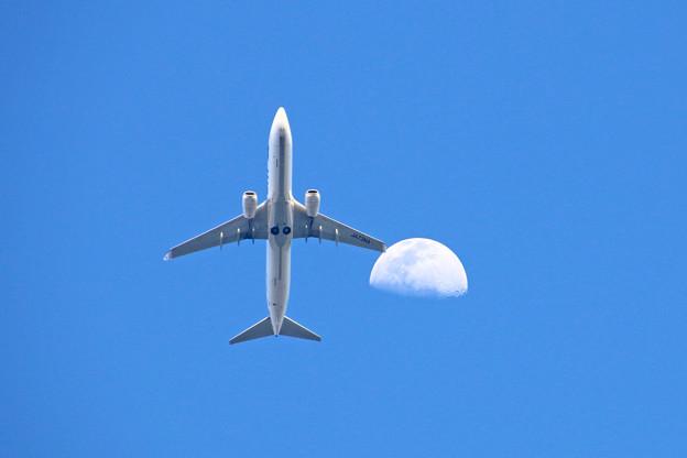 Photos: JA73AN スカイマーク Boeing 737-8HX
