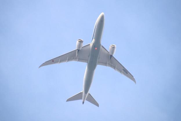 JA809A 全日空 Boeing 787-8 Dreamliner