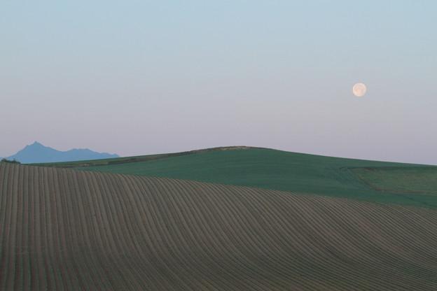 IMG_7884 月没の丘