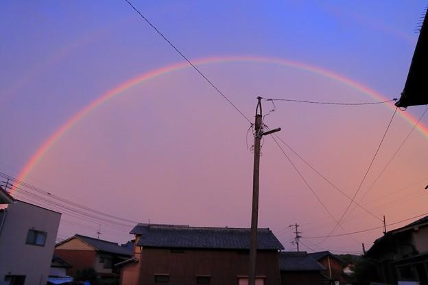 虹の架け橋