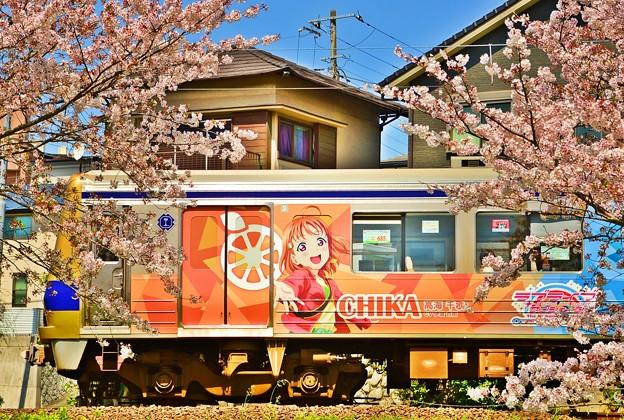 桜が終わる前に・・・ラブライブサンシャイン