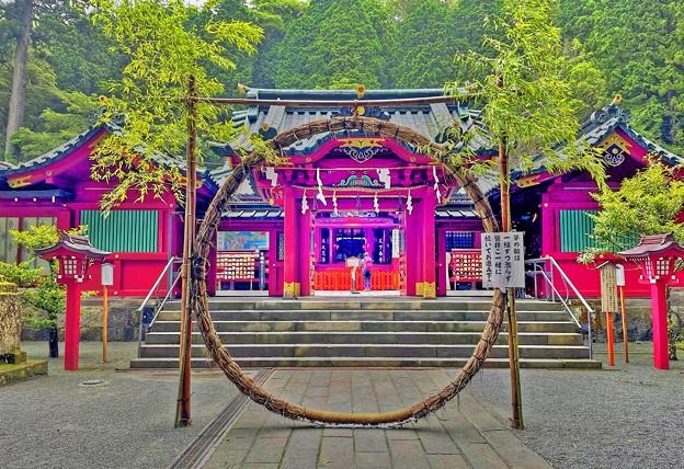 パワースポット ~箱根神社 茅の輪~