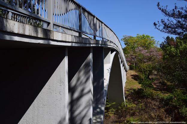 0557 橋を写し