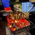 Photos: キャンプ飯の炭火焼き鳥