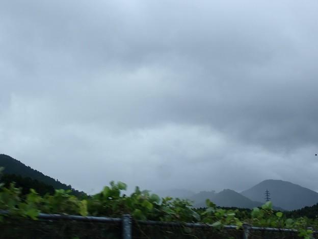 竹田城跡は雲の中