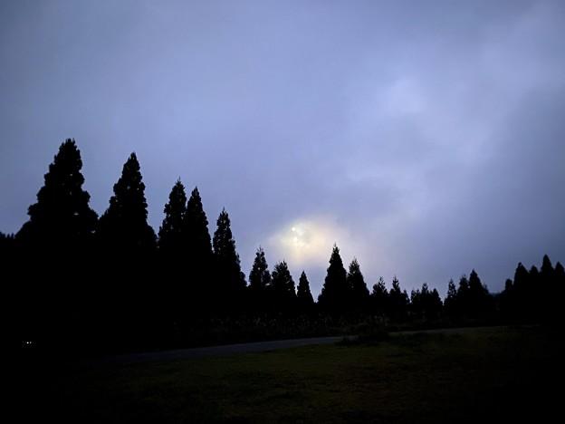月が上ってきました