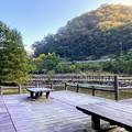 池のベンチ