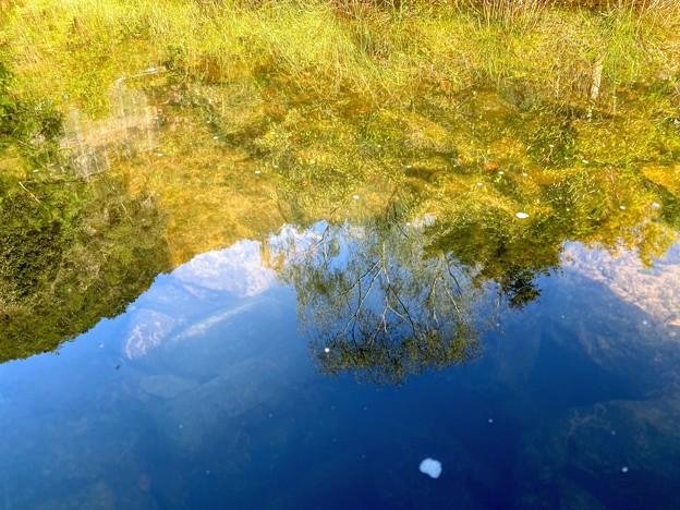 池に映る青空