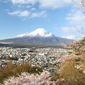 新倉山浅間公園1