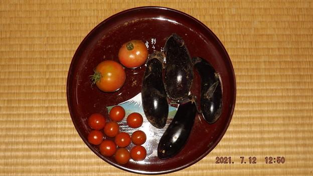 2021/07/12(月)・畑のお野菜収穫(#^^#)