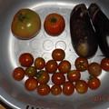 Photos: 2021/07/23(金・祝)・午後に採れた野菜達